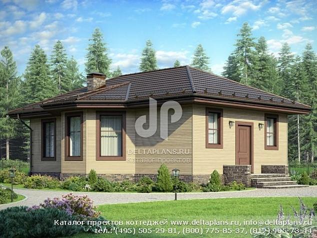Проект небольшого одноэтажного узкого дома